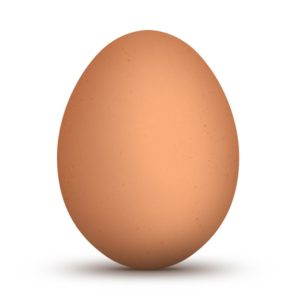 imitacion huevo gallina