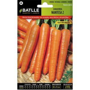 zanahoria nantesa 2 batlle